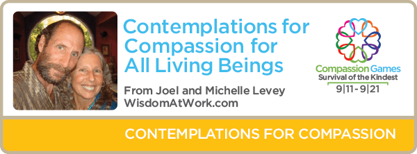 Day Eleven: Receiving and Radiating Compassion