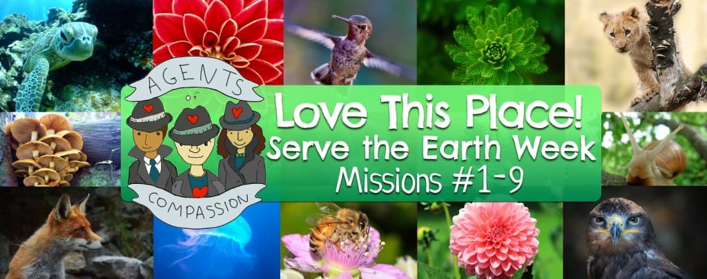 Love This Place - Mission Page Header