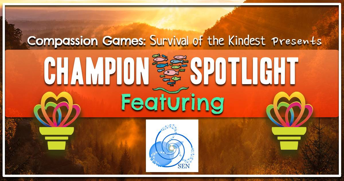 Champion Spotlight: Synergized Earth Network